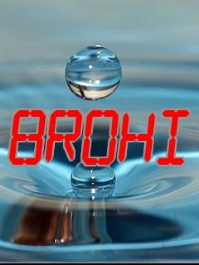 Brohi